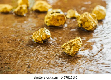The pure gold ore found in the mine on a stone floor with water.
