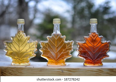 Pure Nova Scotia Maple Syrup made from backyard maple trees.  Lightest bottle is early season, dark bottle is late season syrup.