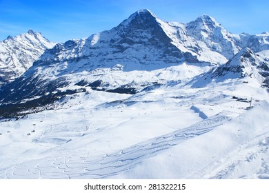 The pure white snow with the ski tracks, leading to the Grindelwald valley from the top of Mannlichen, Switzeland.