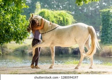Purebred Arabian Horse hugging his owner