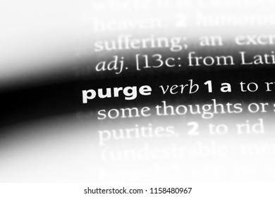 purge word in a dictionary. purge concept.