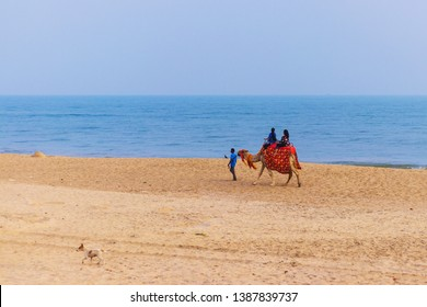 Puri, Odisha, India - 01 May 2019: Tourists riding a camel at the Puri beach in Odisha in India