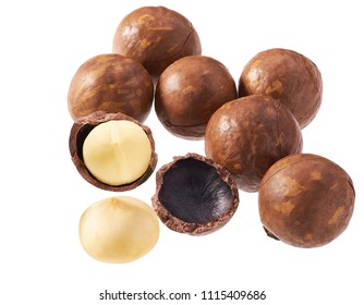 Purified and unrefined macadamia nut isolated on white background