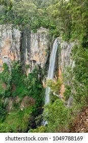 Purling Brook Falls in Springbrook National Park, Queensland, Australia.
