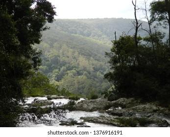 Purling falls, Springbrook, Gold Coast Australia