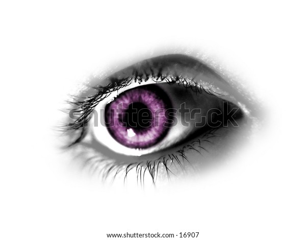 Purple abstract Eye isolated on white background