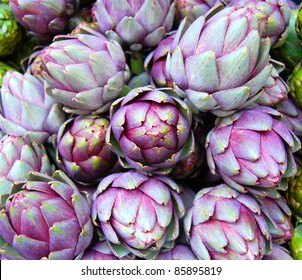 Purple Artichokes Closeup