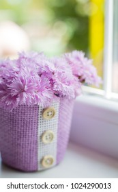 Purple basket with tender bouquet of beautiful pink carnation near window in daylight. Spring motherâ??s day card.
