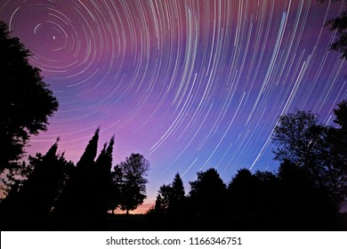 Purple and blue sky with star trails, behind a row of assorted trees