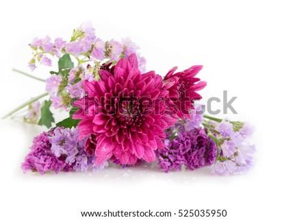 Purple Chrysanthemum Statice Flowers Pink Purple Stock Photo Edit