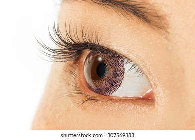 Purple colored contact lenses and eyelashes extension Asian