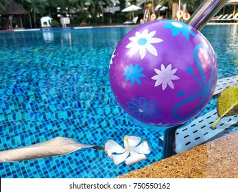 Purple cute ball in the swimming pool with white plumeria and leaf