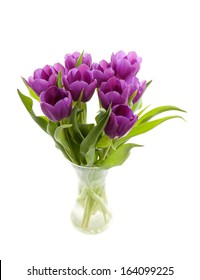 Purple Dutch tulips in vase over white background