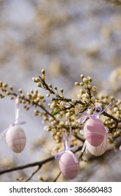Purple easter eggs hanging on a blooming plum tree. Copy space at the top