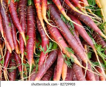 Purple Eastern Carrots at Farmers Market