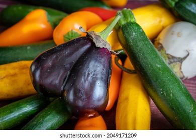 une aubergine violette au milieu des petits légumes du jardin