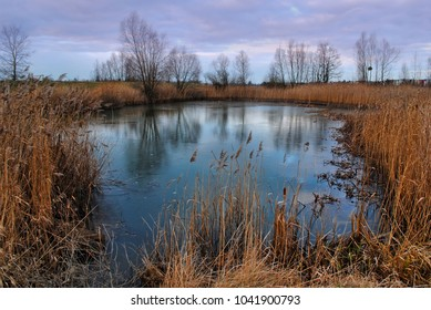 Purple evening sky with clouds above beautiful wild pond hidden between trees, bushes and wheat. Reflection in the water. Serene mood, outdoors waterscape. Blue lakelet in autumn.
