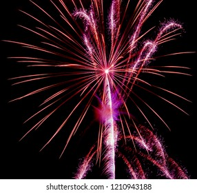 Purple firework burst