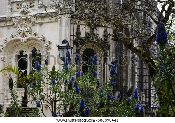 Purple flowers in front of windows of Quinta da Regaleira, Sintra, Portugal