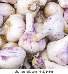 Purple garlic heads at a farmer's market