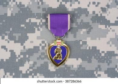 Purple Heart  award on camouflage uniform