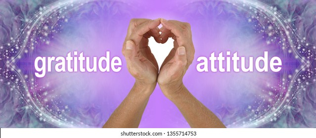 Purple Heart Hands Gratitude Attitude Banner  - female hands making a heart shape with the words GRATITUDE  ATTITUDE either side on a wide purple background with sparkling border