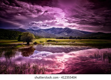purple highlands