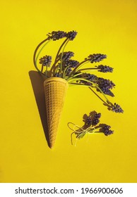Purple hyacinth or muscari flowers in eis cream waffle cone and small bunch with loop on yellow background. Flowers layout or template, vertical. Minimalist floral aesthetic. Spring concept - Shutterstock ID 1966900606