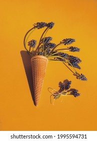 Purple hyacinth or muscari flowers in eis cream waffle cone and small bunch with loop on orange background. Flowers layout or template, vertical. Minimalist floral aesthetic. Spring concept - Shutterstock ID 1995594731