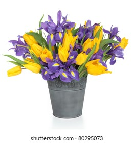 Purple iris and yellow tulip flower arrangement in a distressed metal vase and loose isolated over white background.