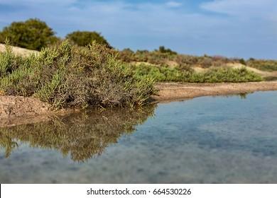 Purple Island in Al Khor, Qatar, Middle East.