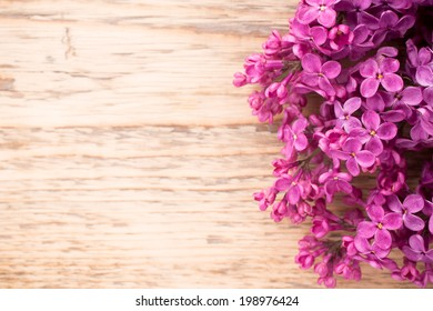 Purple lilac on a wooden background. Studio photography.