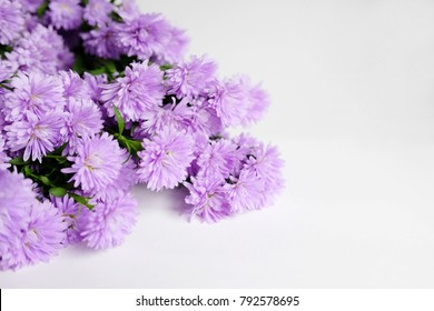 Purple Marguerite daisy flowers blooming decorate in natural garden background.Felicia amelloides (Blue Marguerite). Ultra violet color of 2018. Copy space