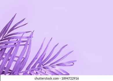 Purple Metallic Leaves Plain Background Monochromatic