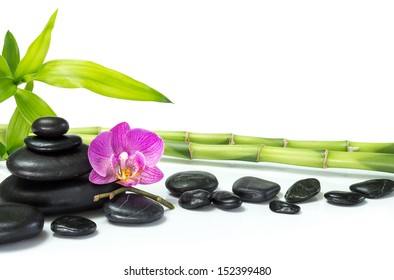 purple orchid with bamboo and many black stones - white background