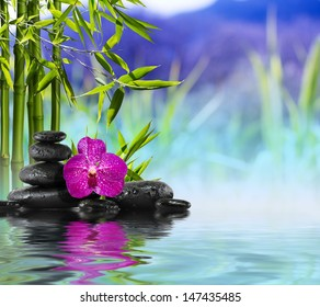 Purple Orchid, Stones and Bamboo on the water