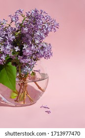 Purple and pink lilac flowers in glass vase with water drops. Bouquet of lilac on pink background. With space for your text - Image