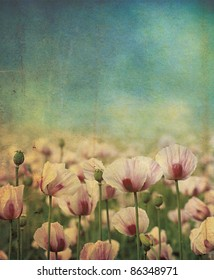Purple poppies set over a grunge style applied background effect, set on a portrait format.