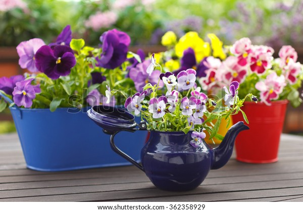 Purple, red and yellow pansy flowers in colorful pots on a balcony table, copy space, background