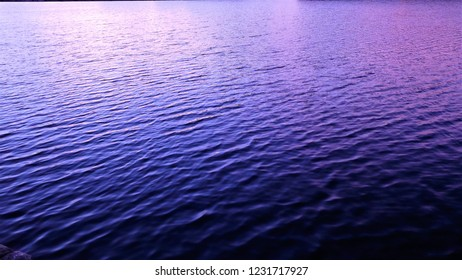 Purple sea in the evening