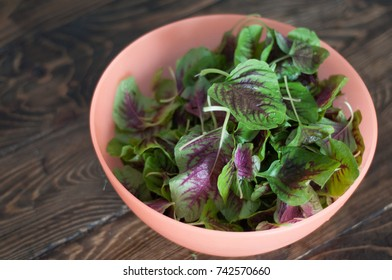 Purple spinach leaves in a bowl. Fresh mix of green and purple spinach on table close up. Dish cooking at home.