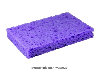 purple sponge macro
