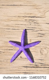 Purple star fish on a weathered piece of wood.