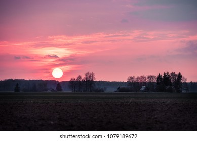 Purple sunset in the Lithuanian countryside. Big sun going down to the forest.