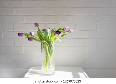 Purple tulips in glass vase on small white table in afternoon sunlight (selective focus)