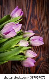 Purple tulips on a dark wooden background