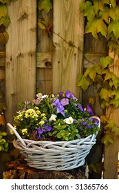 Purple violet and white flowers in a lovely basket in the garden