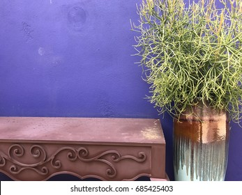 Purple wall with plant and desk
