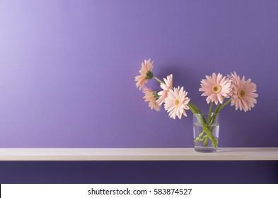 purple wall and shelf