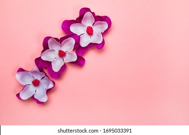 Purple and white flowers on a pastel nude background